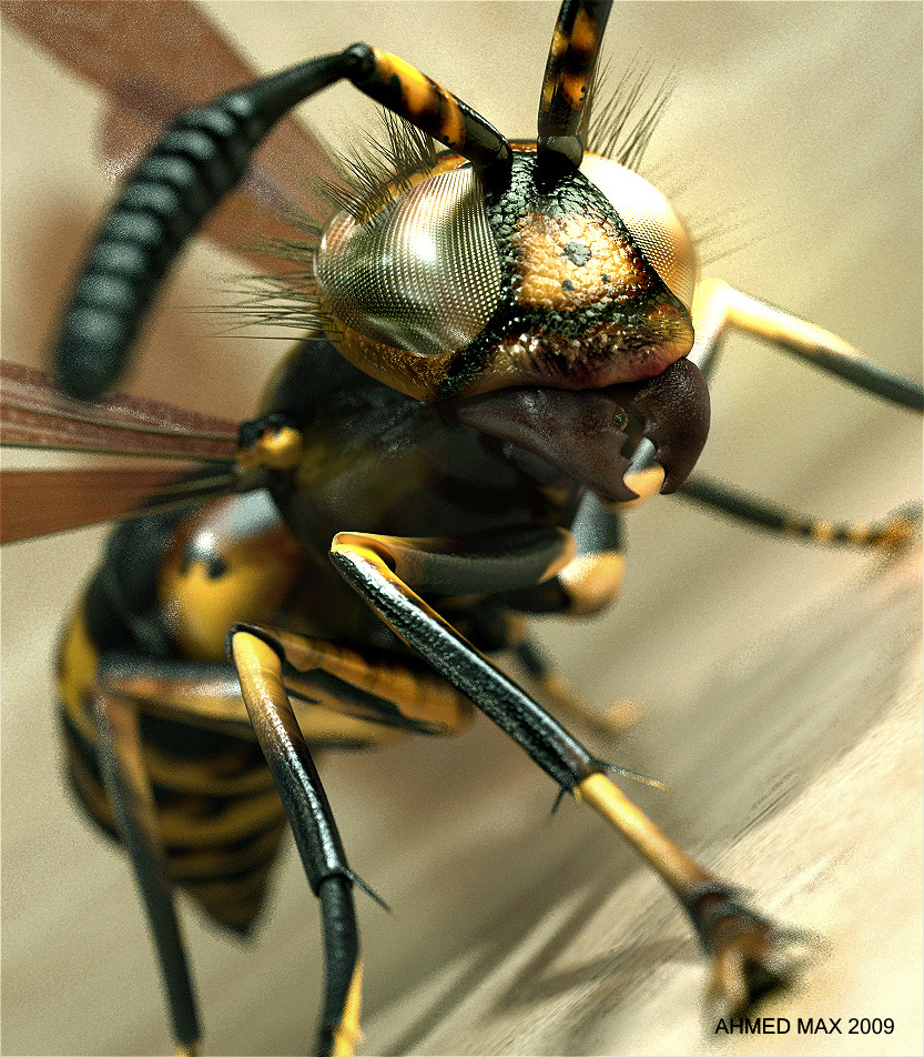 Ahmedmax the hornet 1 163e0a14 r4vg