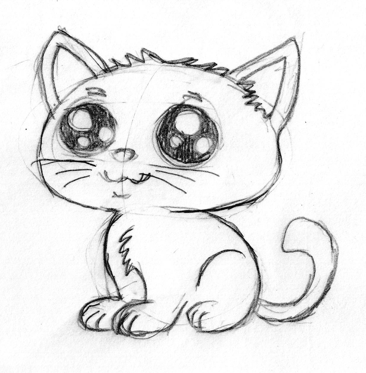 Image of: Illustration Bhudda Cute Cartoon Kitten 0c5f017a Ku78 Bhudda Cgsociety Cute Cartoon Kitten Pencil Sketch By Bhudda 2d Cgsociety