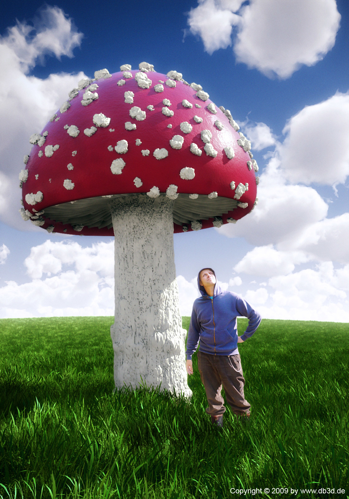 Freebug big fly agaric 1 0568e4ef a19o