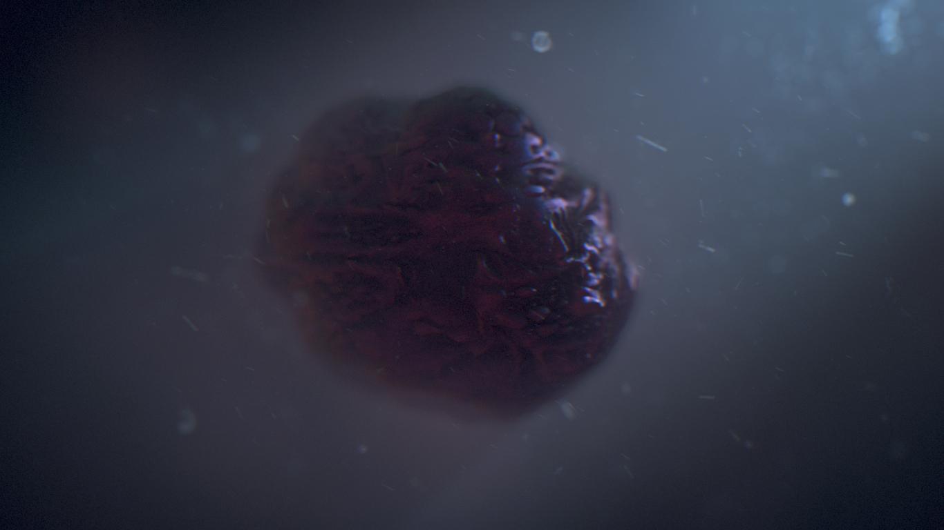 Linden stirk fleshy orb maya slas 1 0e7cb041 s2pl