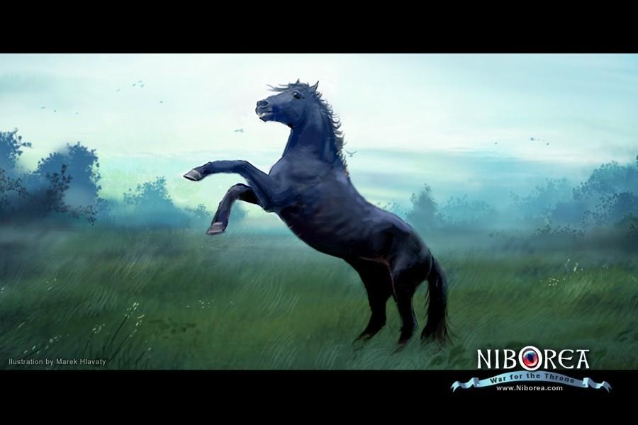 Prasa niborea the stallion 1 bdd50464 zr2k