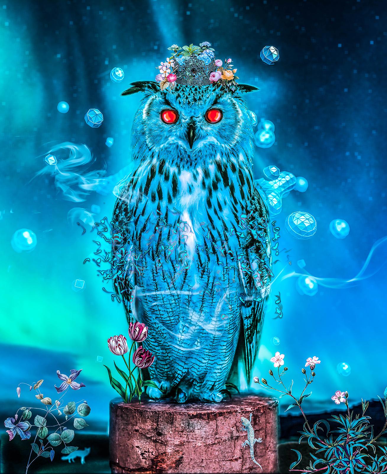 Ritaisabel sapphire owl 1 5f109003 tq1n