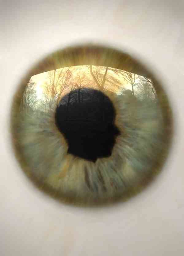 Seger pupil 1 dba9960e zg3u