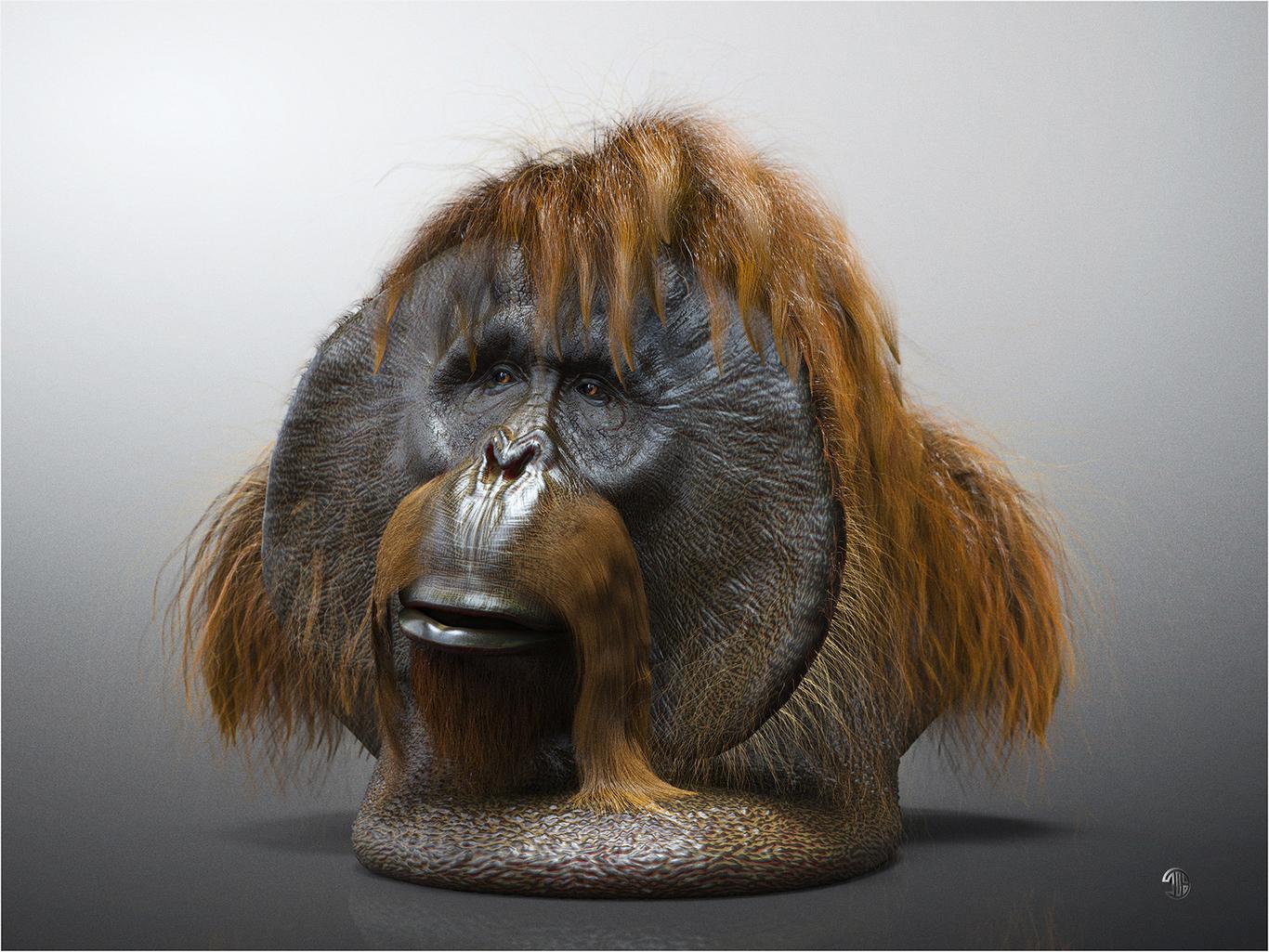 Titiber13 orangutan by titi wi 1 48a1cd82 ltt3
